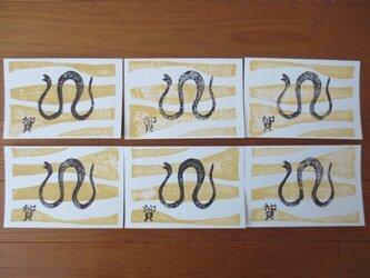 年賀状2013 Desert Snake Ⅱの画像
