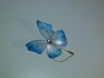 安らぎの紋青蝶 ハットピンの画像