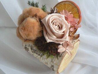 白樺のナチュラルプリザの画像