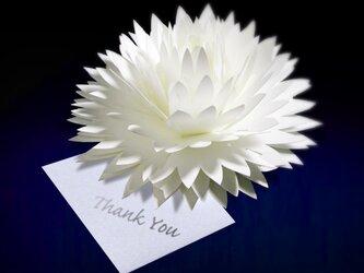 咲くようにひらく 花のサンキューカード〈ダリア〉 forバースデー・ウェディング・アニバーサリー・クリスマス・メッセージカードの画像
