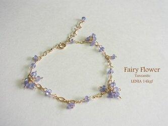 Fairy Flower*myth*14kgfの画像