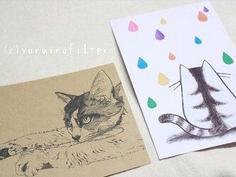 猫のポストカードセットの画像