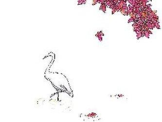 ポストカード4枚セット/秋の画像