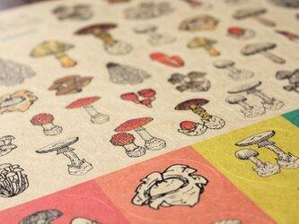 ●キノコ図鑑シリーズ● キノコと毒キノコのシールの画像