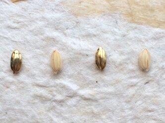 *穀物シリーズ*もみ粒ピアス(金色/シリコンキャッチ)の画像