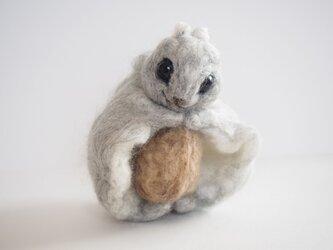 エゾモモンガの宝物☆羊毛フェルトの画像