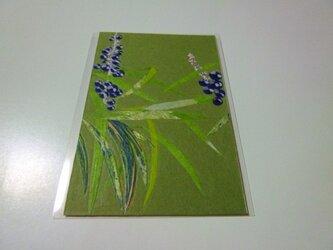 冬のヤブラン(ポストカード)の画像