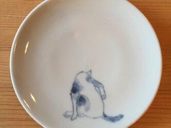 染付4寸猫皿 37の画像