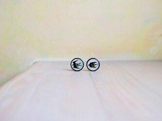 ::: Re♭::: ツバメのシェルボタンイヤリングの画像