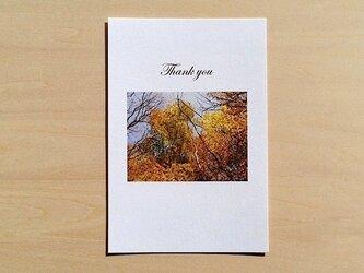 秋の森のお礼状はがきの画像