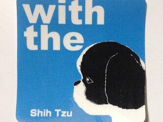 シーズー犬 横顔 ステッカー DOG IN CARの画像