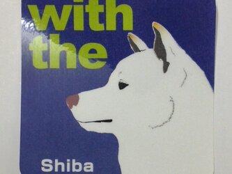 白 柴犬 横顔 ステッカー DOG IN CARの画像