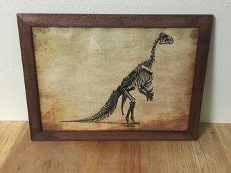 恐竜ポスターCの画像