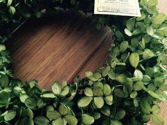 ぎっしり入ったアジサイリース 緑の画像