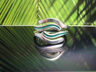 Hawiian tree fern シダのリングの画像