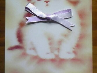 ピンクのリボンのこねこのポストカードⅠの画像