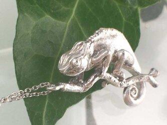 パンサーカメレオンのネックレスの画像