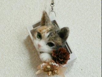 羊毛フェルトのクリスマスオーナメント(猫・三毛)の画像