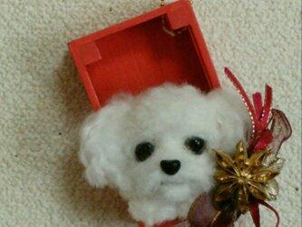 羊毛フェルトのクリスマスオーナメント(犬・トイプー)の画像