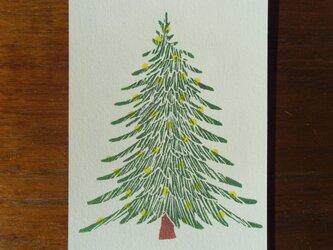 ポストカード(2枚)モミの木の画像