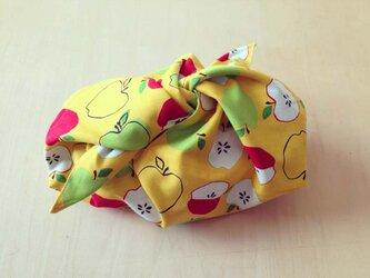 リバーシブル あずま袋 (S)・お弁当袋 「りんご/チェック」の画像