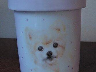 ペットのレクイエム(骨壺)の画像