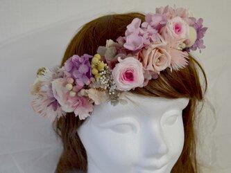 シックピンクの花冠の画像