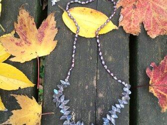 晩秋を愉しむ為のネックレスの画像