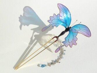 蝶かんざしの画像