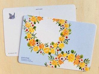 ポストカード キンポウゲの画像