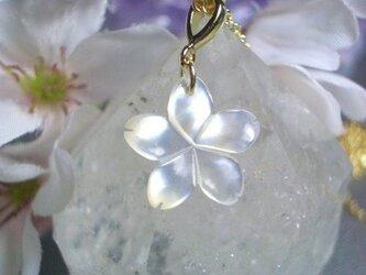 桜ネックレス WGの画像