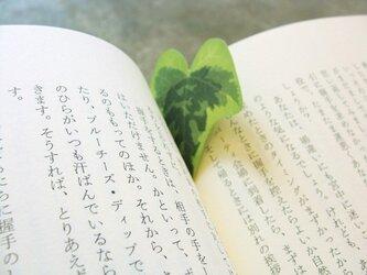 ivy paper(アイビーペーパー)の画像