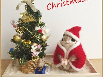 癒しの妖精✿momoちゃん クリスマス&お花バージョンの画像