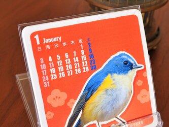 2016 Birds Calendar【野鳥カレンダー】の画像