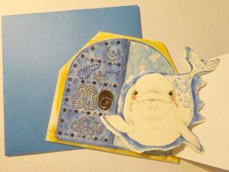 「S様分」チュニジアの白イルカカードの画像