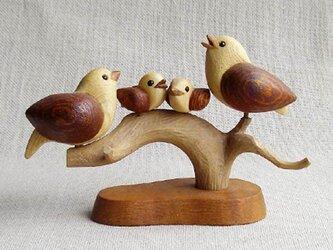 小鳥ファミリーの画像