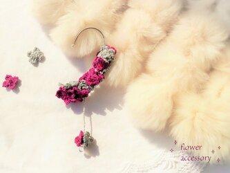 秋冬色☆レース編みの紫陽花のイヤーフック(ワインレッド系)の画像