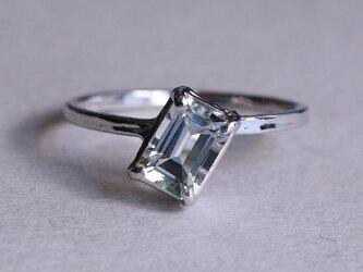 SV Ring_0006の画像