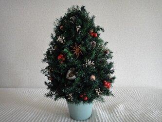 木の実いっぱいのX'masツリー①の画像