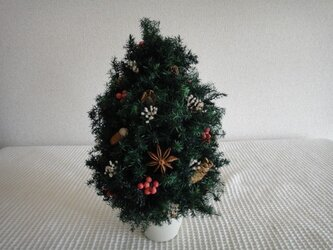 木の実いっぱいのX'masツリー②の画像