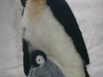 コウテイペンギン親子の画像