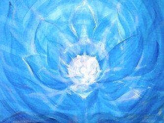 宇宙に咲く蓮の画像