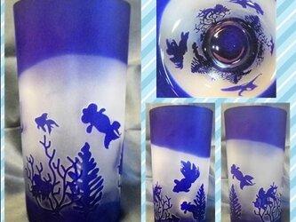 金魚鉢のストレートグラスの画像