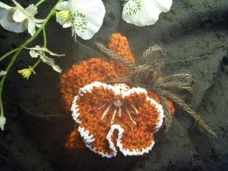 洋蘭★カトレアの花ヘアゴムorブローチの画像