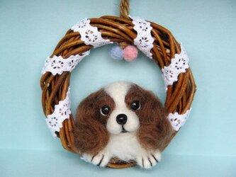 キャバリア リース 犬の画像