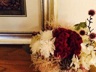 ケイトウと紫陽花の画像
