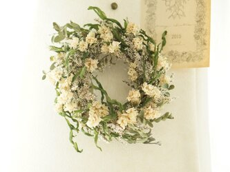 white&green wreathの画像
