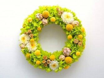 フラワーリース  野の花(プリザーブドフラワー)【受注生産】の画像