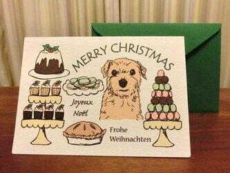 クリスマスカード*お菓子とノーフォークテリアの画像