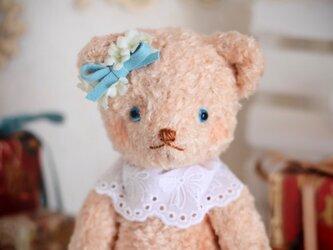 テディベア- Rosieの画像